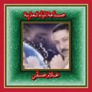 Allam Sakr